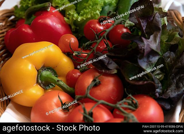 10 January 2020, Berlin: Peppers, tomatoes and lettuce from the Teltow-Fläming region are on a table during a press conference at the national representation