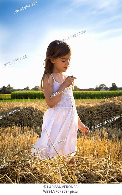 Little girl standing in havested field smelling flower