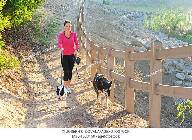 Woman walking her dogs early morning, Thousand Oaks, California, USA