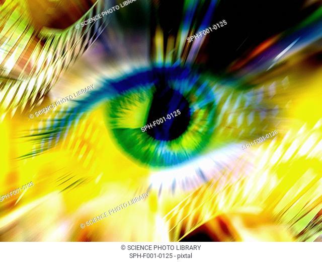 Biometrics, conceptual artwork