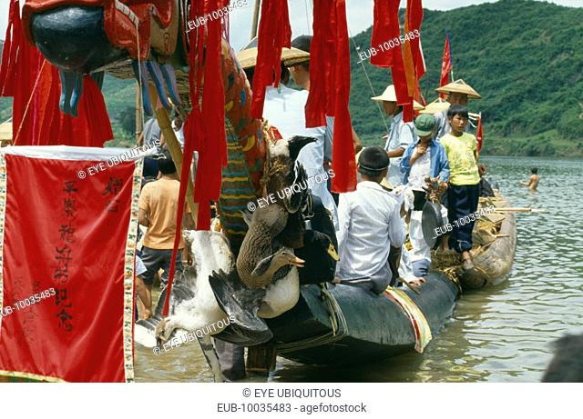 Dragon Boat festival. View along decorated boat with live geese tied to prow