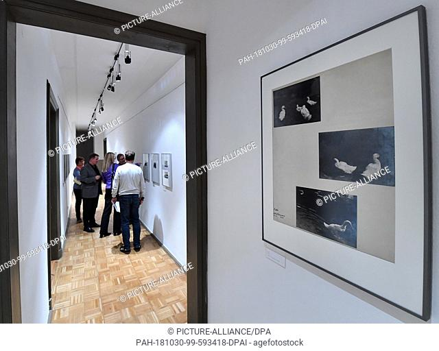 "30 October 2018, Thuringia, Gera: Before the opening of the special exhibition """"...committed to objectivity. Aenne Biermann - Photographs 1926 to 1932"""""