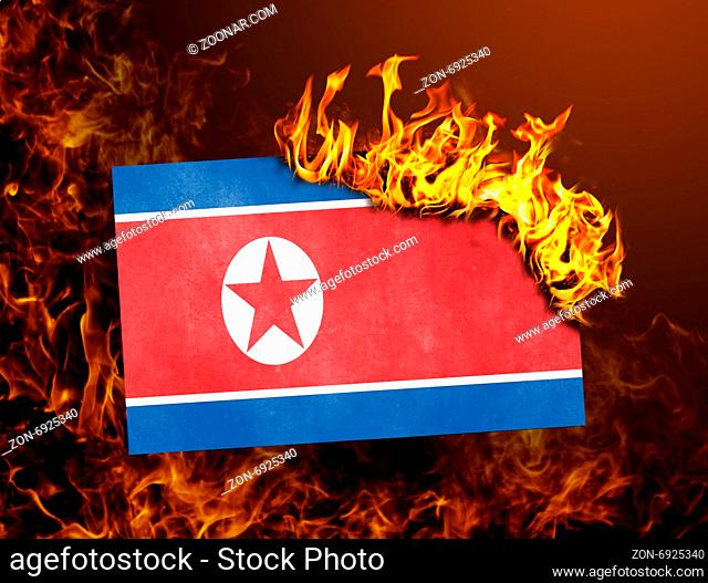 Flag burning - concept of war or crisis - North Korea