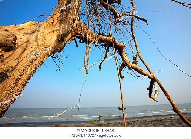The Sundarbans, aftermath of cyclone Aila, a UNESCO World Heritage Site and a wildlife sanctuary The largest littoral mangrove forest in the world