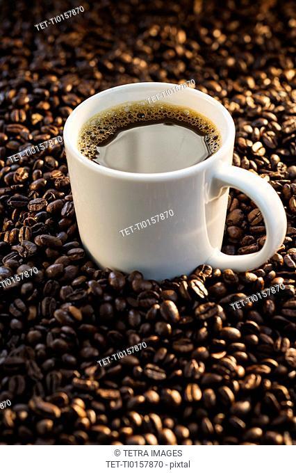 Coffee and coffee beans, studio shot