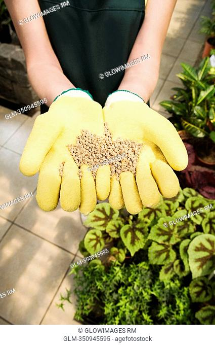 Woman holding a handful of compost in a greenhouse