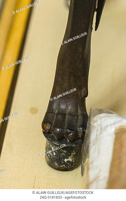 Egypt, Cairo, Egyptian Museum, from the tomb of Yuya and Thuya in Luxor : The feet of a wooden chair are lion paws, in silver