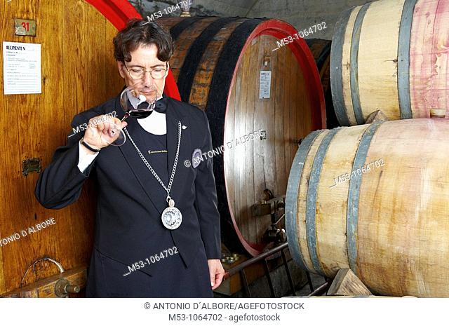 An adult male caucasian sommelier smelling red wine while standing in a underground wine cellar