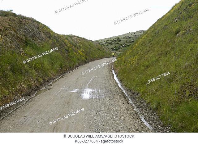 the Central Otago Rail Trail, South Island, New Zealand