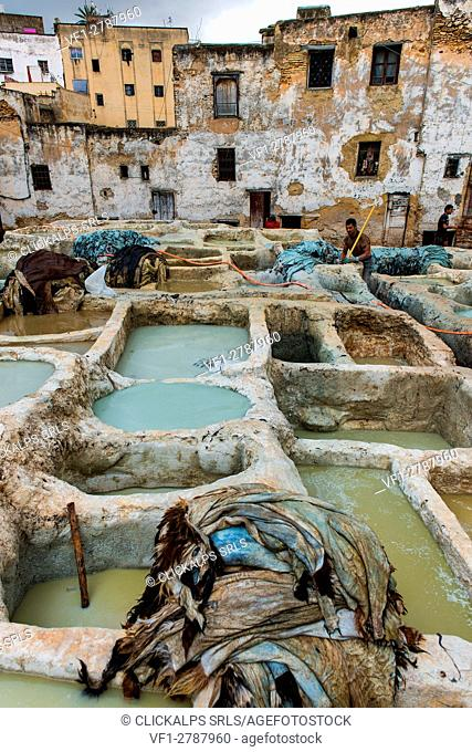 Fes, Morocco, North Africa. Workings between the tanks in the tannery
