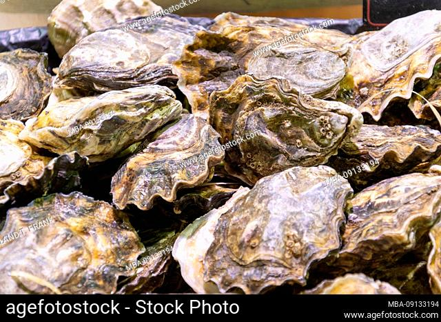 France, Lorraine, Metz, market hall, oysters