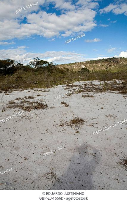Surface of Leveling, Vegetação Xerofítica, São Gonçalo do Rio Preto, Minas Gerais, Brazil