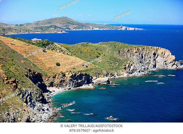Coastal landscape of the Cote Vermeille, Pyrenees orientales, Languedoc Roussillon, France