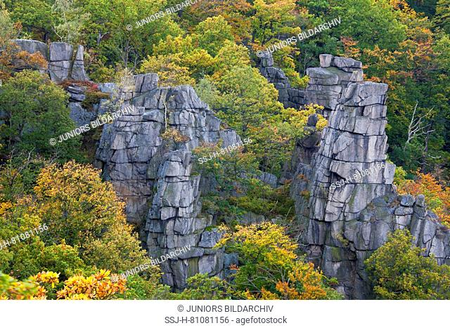View into the Bode Gorge. Harz Mountains, Saxony-Anhalt Germany