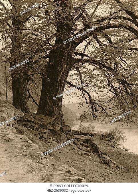 'In the Valley of the Nab', 1931. Artist: Kurt Hielscher
