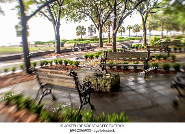 Benches and trees in Water Front Park in Charleston South Carolina