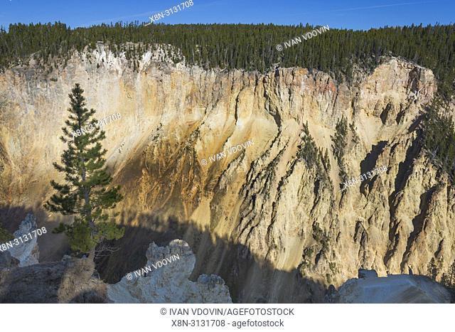 Mountain landscape near Yellowstone Falls, Yellowstone National Park, USA
