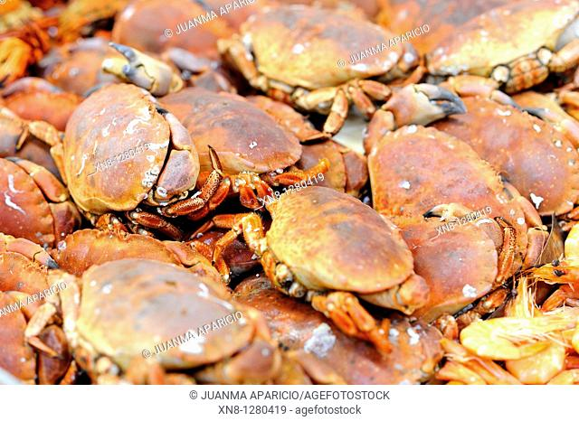 Crabs piled on the counter of a fish shop