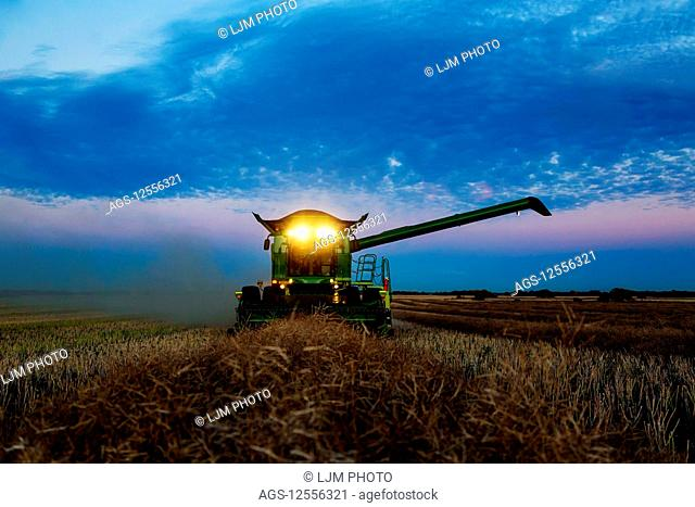 A fully loaded combine with its lights on arm out for transer, harvesting canola after sunset; Legal, Alberta, Canada