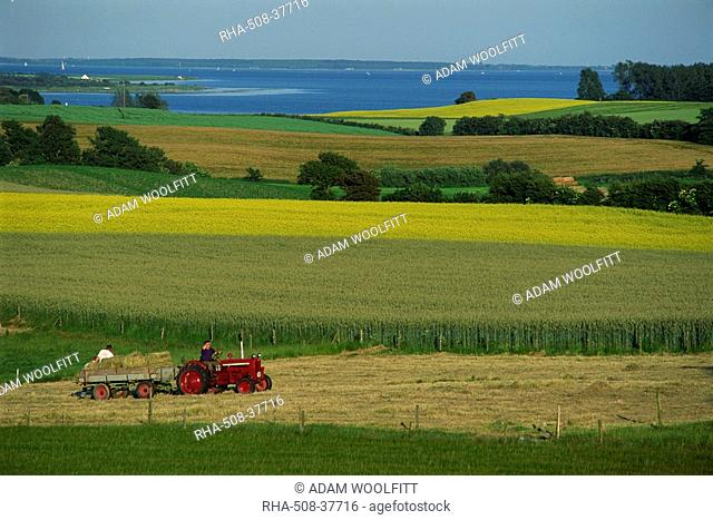 Tractor in field at harvest time, east of Faborg, Funen Island, Denmark, Scandinavia, Europe