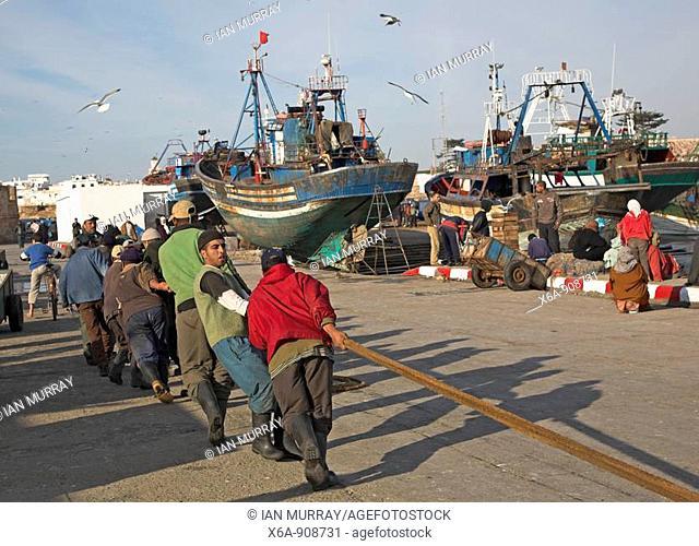 Fishermen hauling ropes in the fishing harbour, Essaouira, Morocco