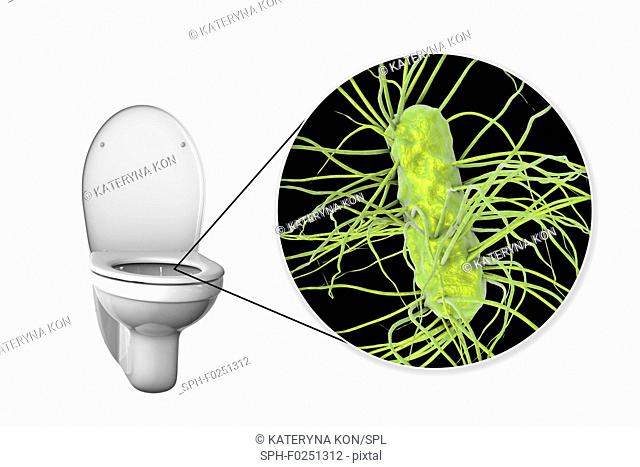 Toilet microbes, conceptual illustration