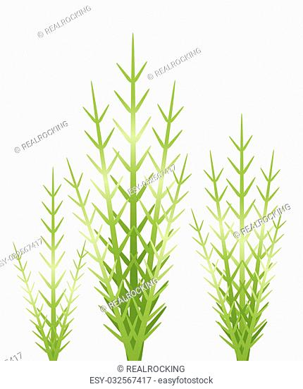 illustration drawing of three beautiful green grass