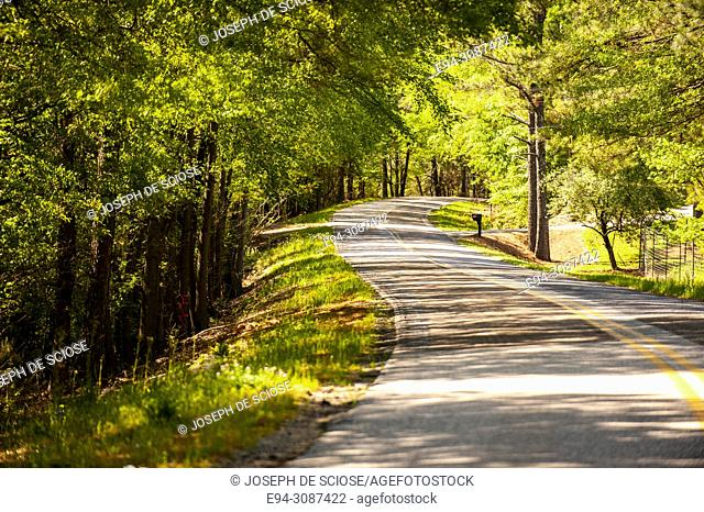 A narrow winding 2 lane country road with a double yellow line flanked by trees in the spring in Alabama, USA