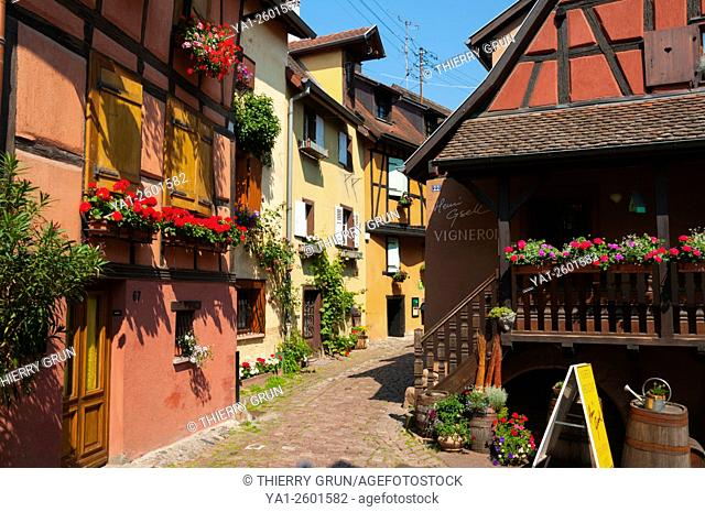 France, Haut Rhin (68), Eguisheim village (elected most beautiful french village), rue du rempart sud street