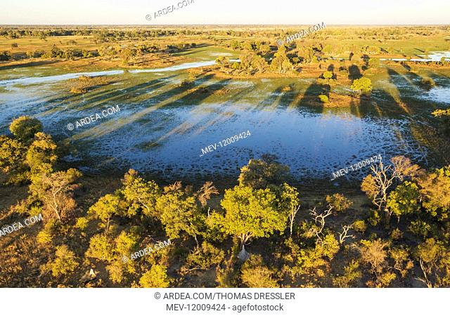 Freshwater marshes with streams, channels and islands - in the late evening - aerial view - Okavango Delta, Moremi Game Reserve, Botswana