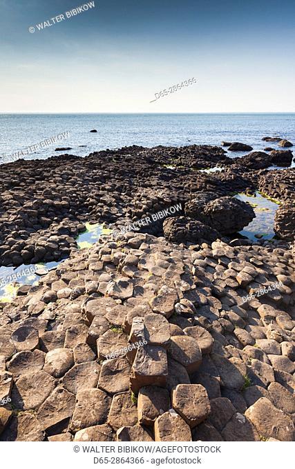 UK, Northern Ireland, County Antrim, Bushmills, Giants Causeway, Unesco World Heritage Site, coastal rock formation of basalt, dusk