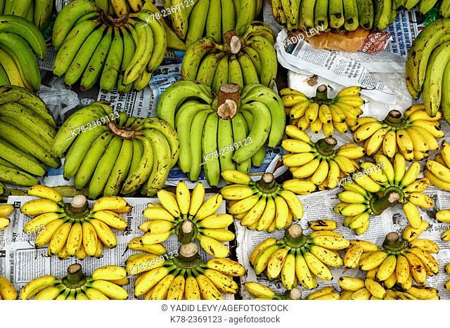 Bananas, Can Tho Market, Mekong Delta, Vietnam