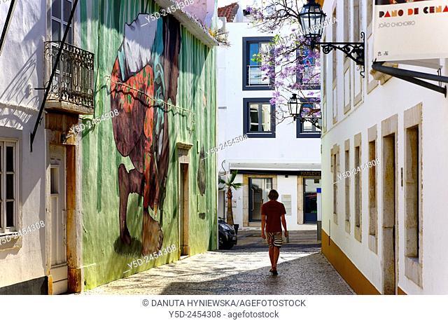 Europe , Portugal, Algarve , Western Algarve, Faro district , Lagos , Rua Lancarote de Freitas in historic center