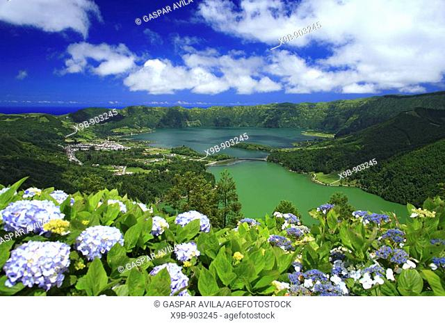 Sete Cidades crater and the twin lakes, with hydrangeas on the foreground  Sao Miguel island, Azores islands, Portugal