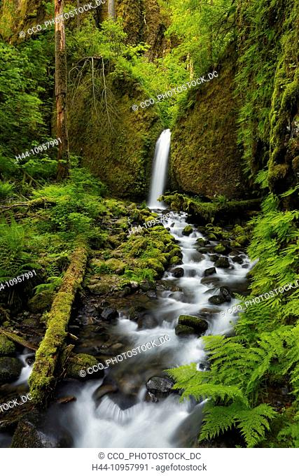 Upper Ruckles Creek Falls in the spring in the Columbia River Gorge, Oregon. USA