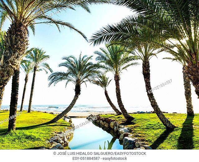 Los Alamos Beach, Torremolinos, Málaga, Andalusia, Spain, Europe