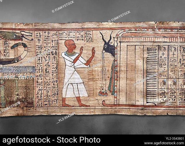 Ancient Egyptian Book of the Dead papyrus - Aaner Book of the Dead, Thebes - 21st Dynasty (1076-943C). Turin Egyptian Museum. Grey Background