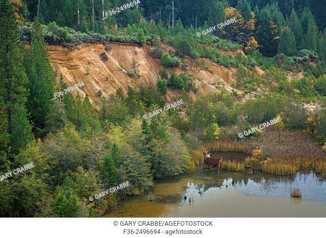 Scarred landscape from hydrolic mining during the Gold Rush, Nevada County, California