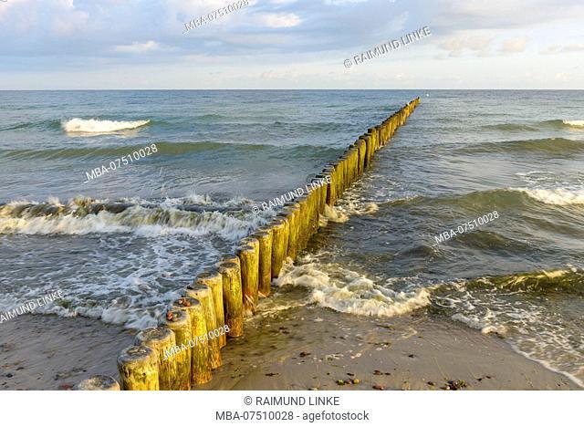 Baltic sea beach with breakwater in the morning, Nienhagen, Baltic Sea, Western Pomerania, Mecklenburg-Vorpommern, Germany
