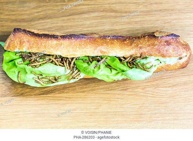 Edible mealworms in a sandwich