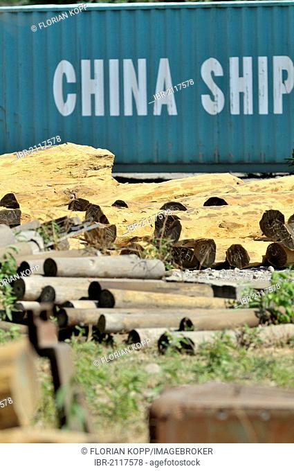 Logs from the Chaco region in front of a container labeled China Shipping, export of valuable tropical timber to China, Salta province, Argentina, South America