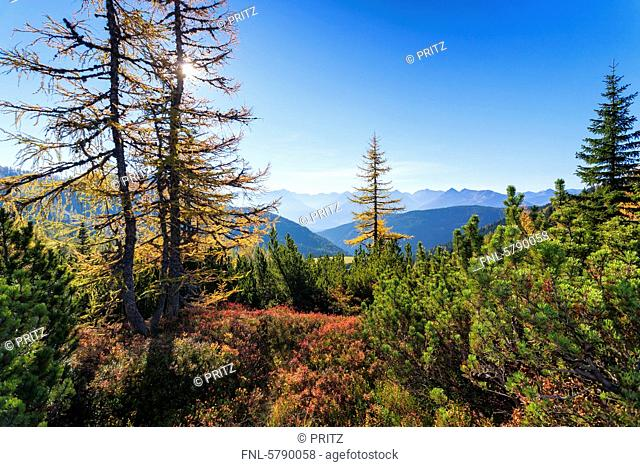 Autumnal mountain landscape at Dachstein, Ramsau, Austria