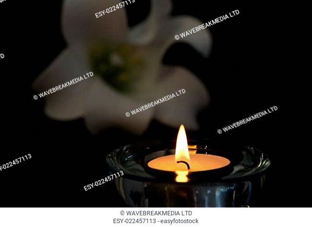Tea light candle lighting in glass holder with white lily in background symbolising loss