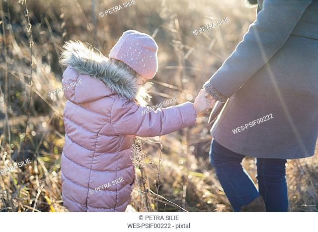 Back view of little girl hand in hand with her mother on autumnal meadow at Golden hour