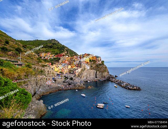 View of harbour and colourful houses, Manarola, Cinque Terre, La Spezia, Liguria, Italy, Europe