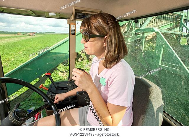 Female farmer in cab, driving cucumber harvester; Preston, Maryland, United States of America