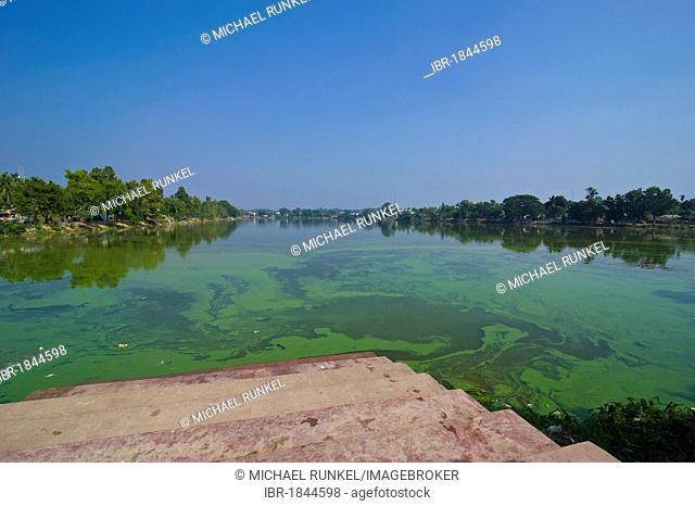 Jagannath Dighi tank, large artificial reservoir, Udaipur, Tripura, Northeast India, Asia