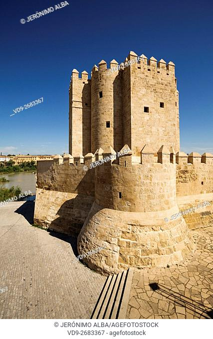 Torre de la Calahorra medieval tower, Cordoba City Andalusia, Spain, Europe