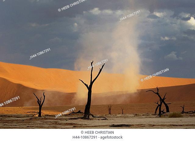 Dead Vlei, Sand Dunes, Sossusvlei area, Namib Naukluft, National Park, Hardap Region, Namibia, Africa, Travel, Nature