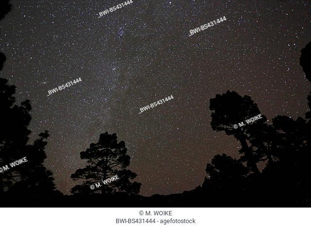 starlit sky with Milky Way galaxy at Mirador Cumbrecita, Canary Islands, La Palma